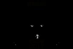 Calcutta International Cult Film Festival